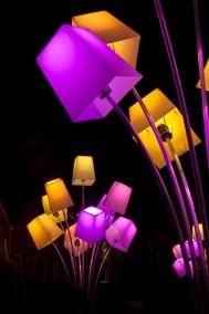 portfolio - glow-5
