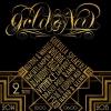 portfolio - reportage - 2014-12-31 - biki90 goud en niew_logo