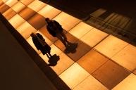 portfolio - reportages - glow2014 - glow_next_pix_DSC_0331-Edit-2